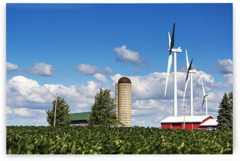 Large metal windmills in a farm yard with red barn and silo, soy bean field in the foreground and blue sky and clouds in the background; Ontario, Canada by PacificStock