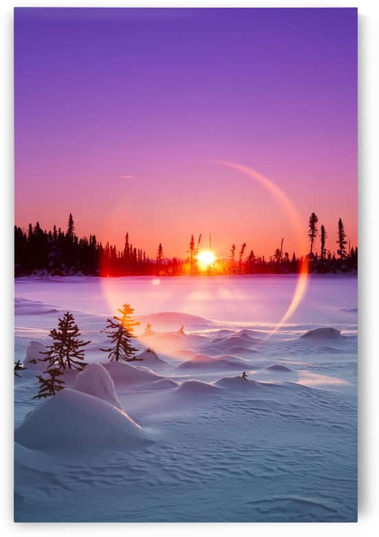 Sun flare glowing over a winter landscape; Trapper Creek, Alaska, United States of America by PacificStock