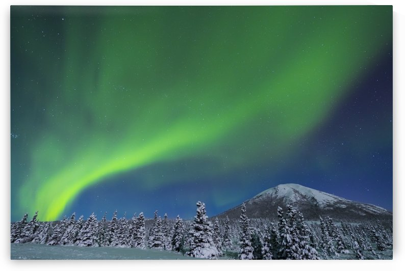 The aurora glows in the sky above Donnelly Dome and a snowy, moonlit landscape, south of Delta Junction; Alaska, United States of America by PacificStock