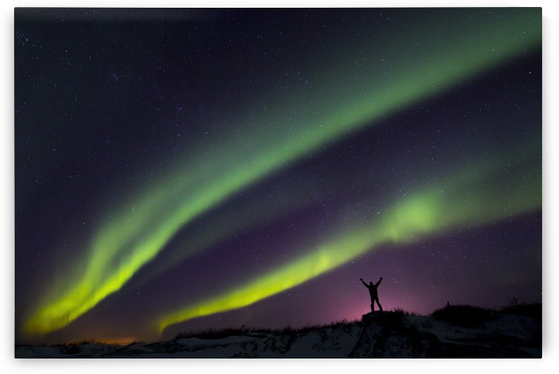 Colourful Aurora borealis over a man with arms outstretched silhouetted against light pollution from nearby Fort Greely; Alaska, United States of America by PacificStock