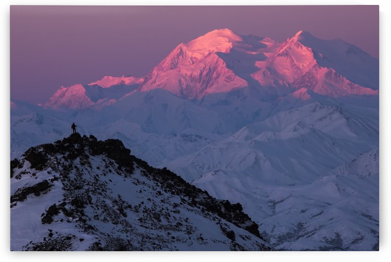 A hiker on a ridge in Denali National Park is dwarfed by Denali at sunrise in winter; Alaska, United States of America by PacificStock