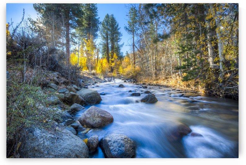Sierra Mountain Stream  by Joy of Life