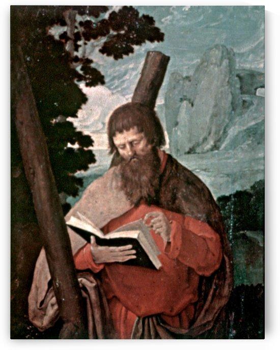 St Andrew in half-figure, in front of landscape by Lucas van Leyden
