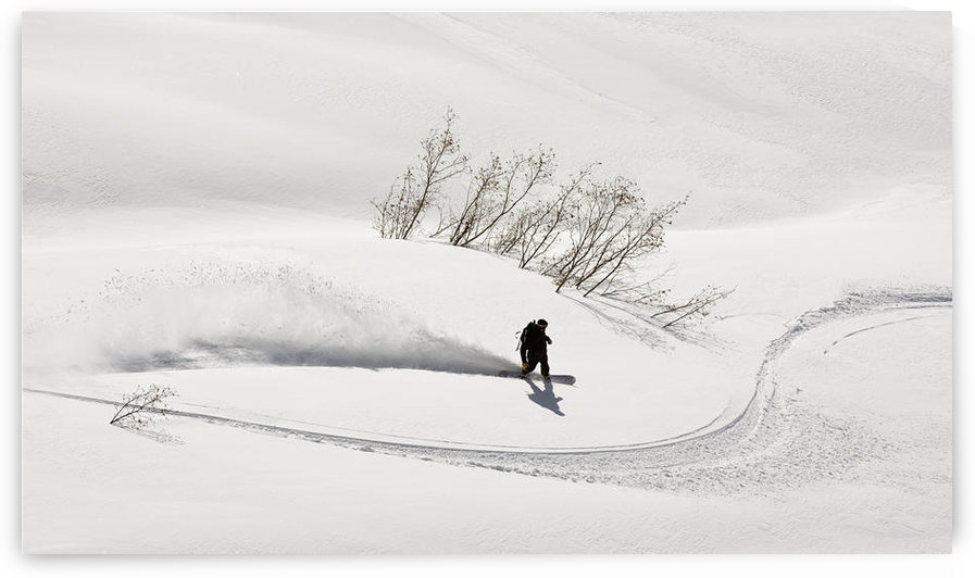 A Backcountry Snowboarder Carving In Turnagain Pass, Southcentral, Alaska by PacificStock