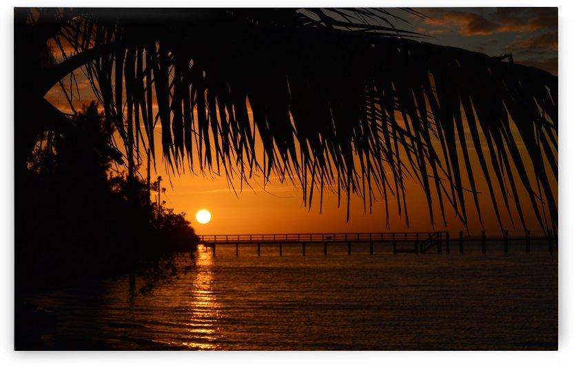 Sunset  by Digitalu Photography