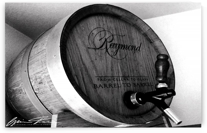 Oak Wine Barrel by Giovanni Tartaglia