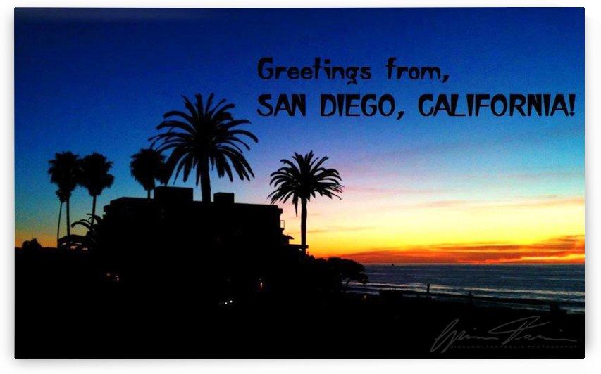 San Diego Palms in La Jolla by Giovanni Tartaglia