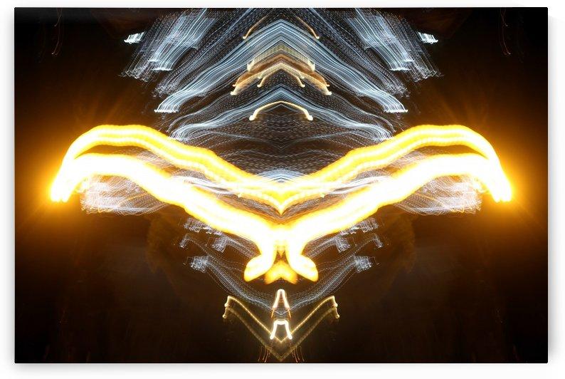 Bird of Light by Mystic Art