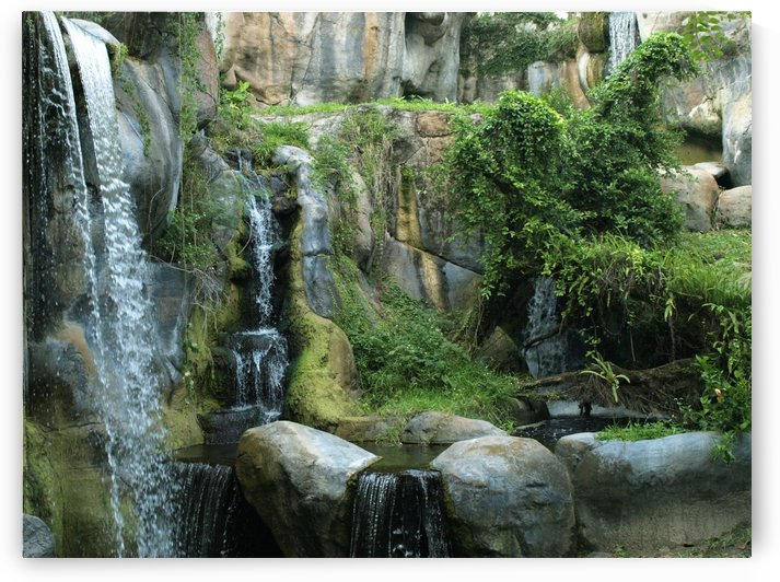 Waterfall  by PJ Lalli