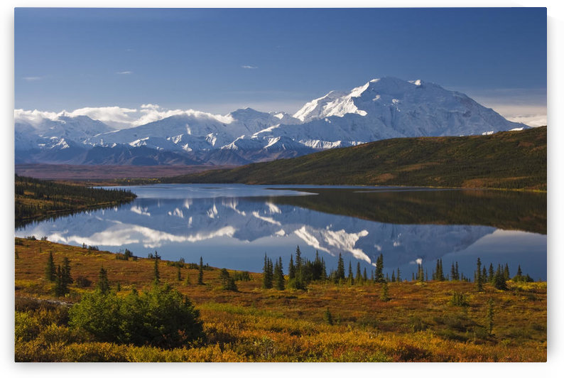Scenic View Of Mt. Mckinley From Wonder Lake, Denali National Park, Interior Alaska, Autumn by PacificStock