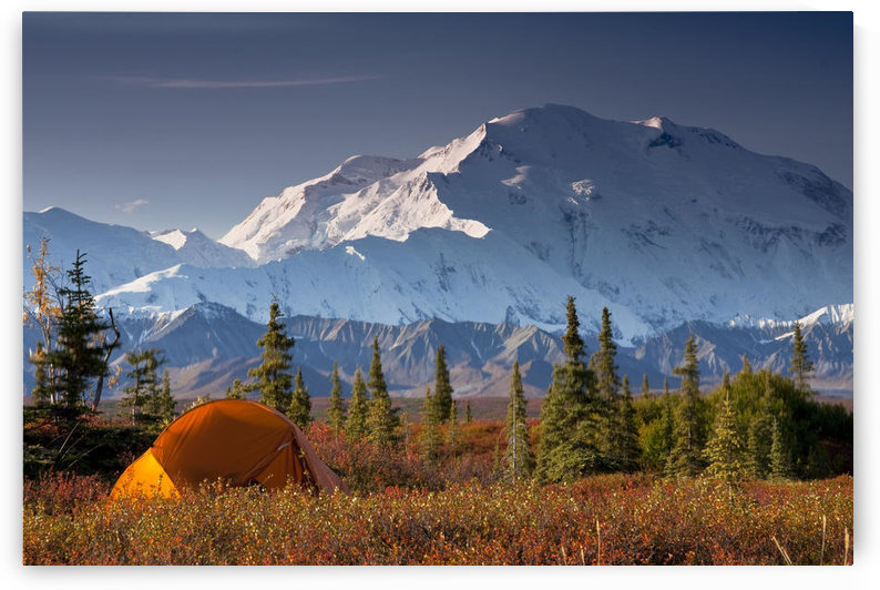 Scenic View Of Mt. Mckinley In The Morning With Tent In The Foreground, Denali National Park, Interior Alaska, Autumn by PacificStock