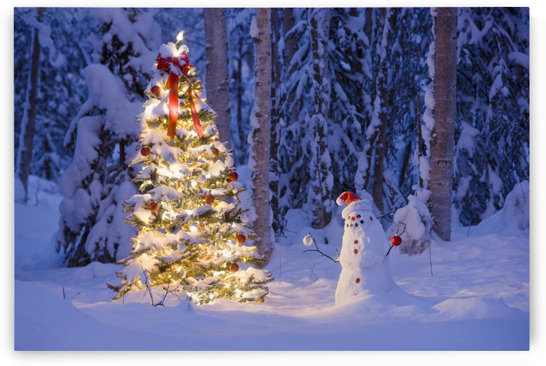 Snowman With Santa Hat Hanging Ornaments On A Christmas Tree In A Snow Covered Birch Forest In Southcentral Alaska by PacificStock