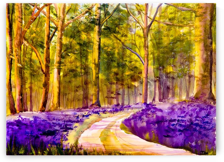 Bluebell Walk  by DHWebbArt