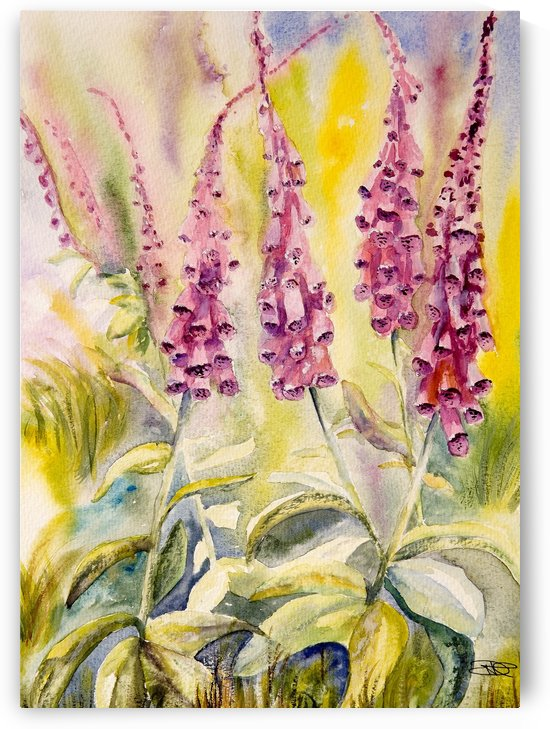 Foxgloves  by ClosetPainter