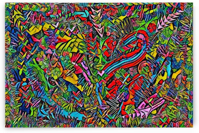 selva  by webjmf