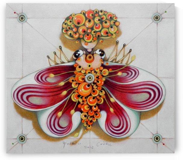 Bridesmaid moth by federicocortese