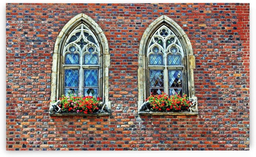 Gothic windows by Mariusz Wojcik