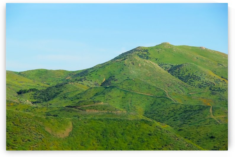 green field and green mountain with blue sky by TimmyLA