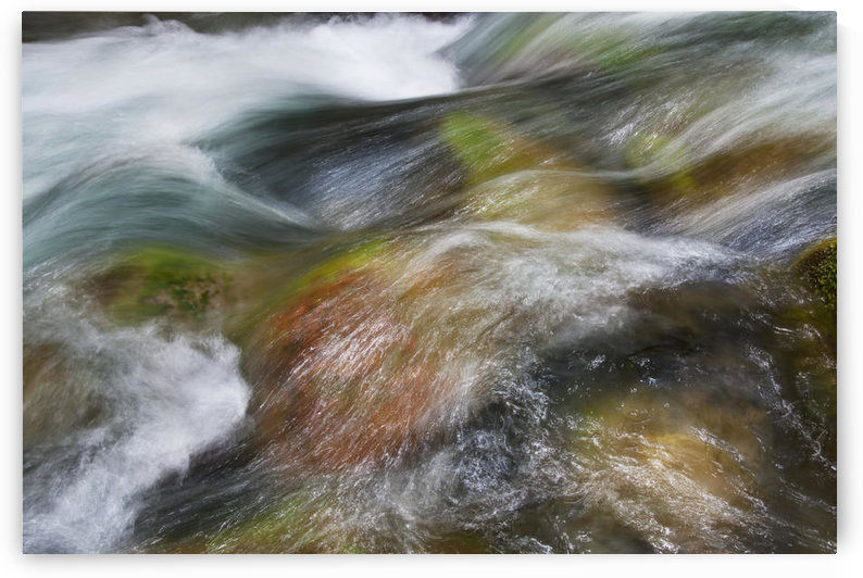 Hawaii, Maui, Iao Valley, A close up of colorful river rocks under water. by PacificStock