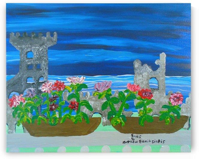 36_036 roses R by Matthew Banitsiotis