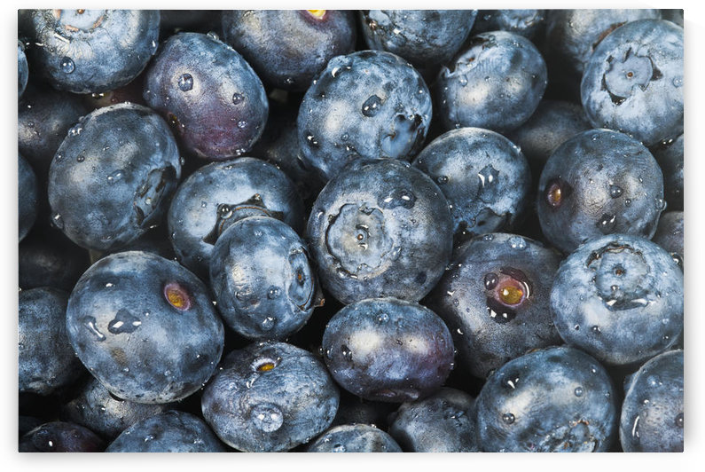 Close up shot of several fresh blueberries. by PacificStock