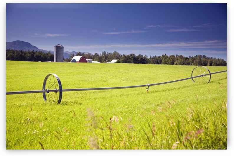 Rolling Irrigation Sprinkler On Hay Field W/Farm Background Mat-Su Valley Sc Alaska Summer by PacificStock