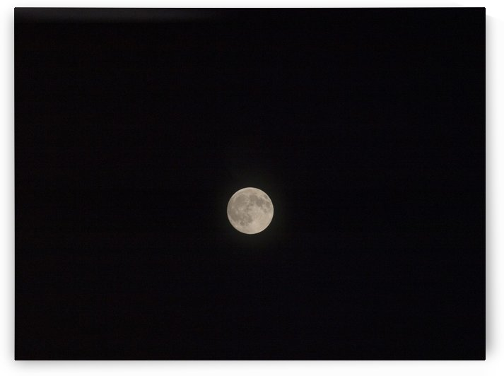 Photo image of a full moon on a clear night  by PJ Lalli