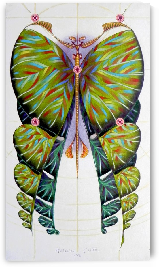 Fibonacci butterfly by federicocortese
