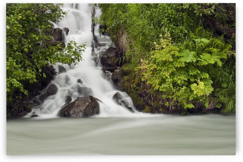 A Cascading Waterfall Flows Into Granite Creek, Turnagain Pass, Chugach National Forest, Summer by PacificStock