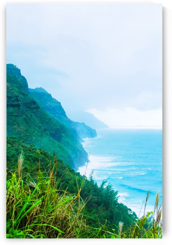 green mountain and ocean view at Kauai, Hawaii, USA by TimmyLA