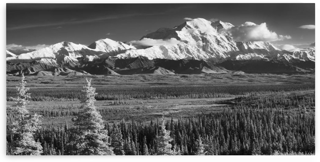 Infrared Panorama Of Denali And The Alaska Range Taken From Near The Wonder Lake Campground, Denali National Park by PacificStock