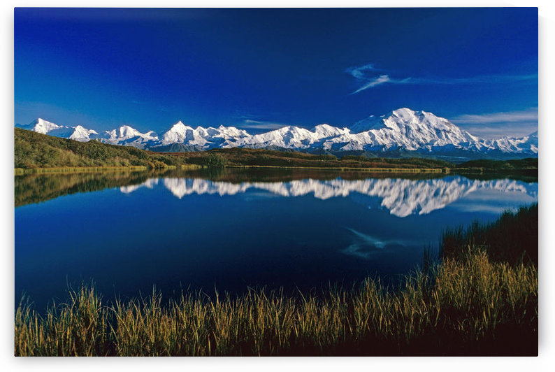 Mt Mckinley Relfected In Wonder Lake Denali National Park Alaska Summer by PacificStock