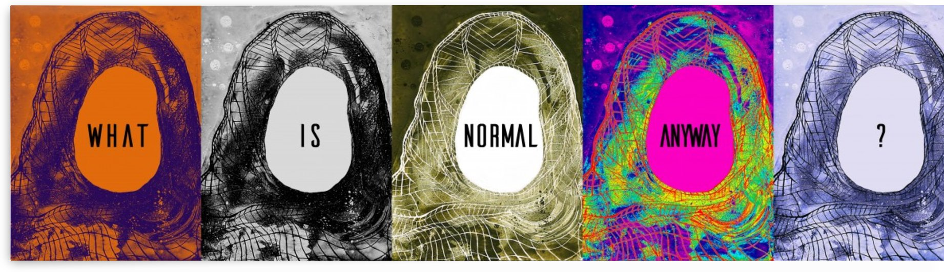 What Is Normal Anyway? by Rana Obaid