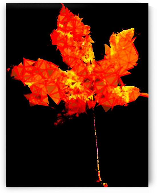 orange and yellow geometric polygon maple leaf abstract with black background by TimmyLA