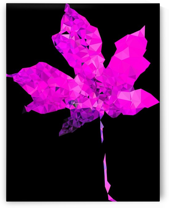 pink geometric polygon maple leaf abstract pattern with black background by TimmyLA