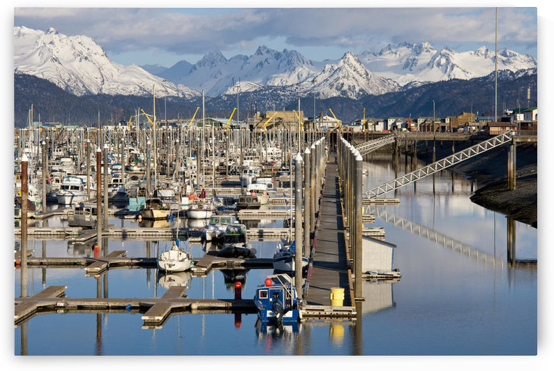 Homer Boat Harbor In Spring, Kenai Peninsula, Alaska by PacificStock