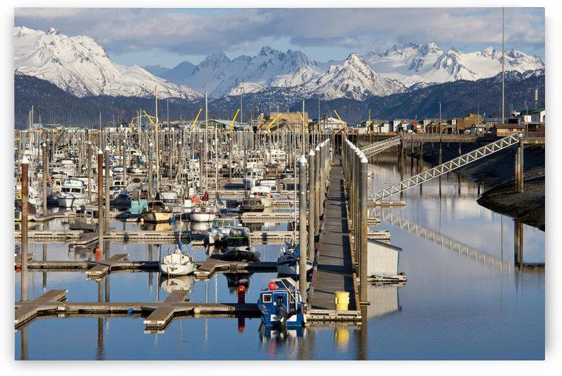 Homer Boat Harbor In Spring, Kenai Peninsula, Alaska by PacificStock