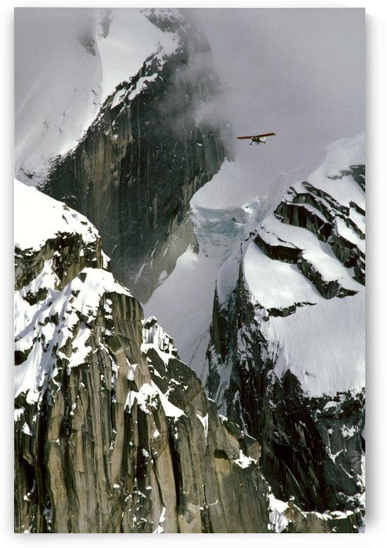 Glacier Pilot & Plane In Ak Range Moose's Tooth In Ak by PacificStock