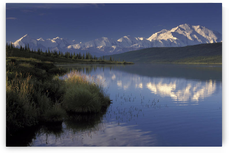 Mt Mckinley Reflects In Wonder Lake Denali Np Ak In Summer Alaska Range by PacificStock