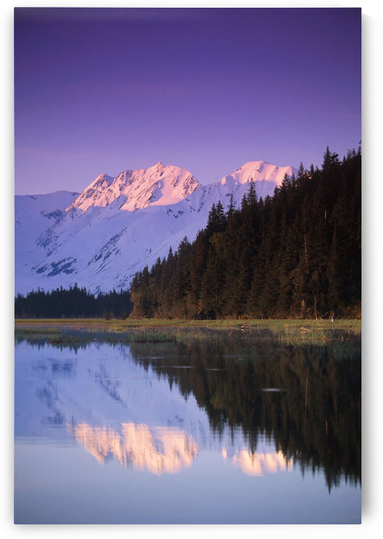 Kenai Mtns Reflected In Lake Southcentral Ak Summer Scenic by PacificStock