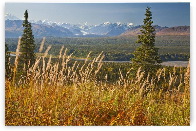 View Of Alaska Range And Eldridge Glacier, Southcentral Alaska, Autumn by PacificStock