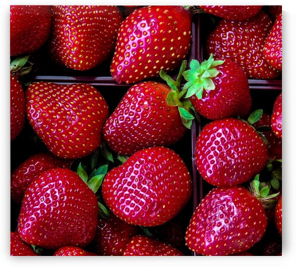 Quebec Strawberries by Philippe Collard
