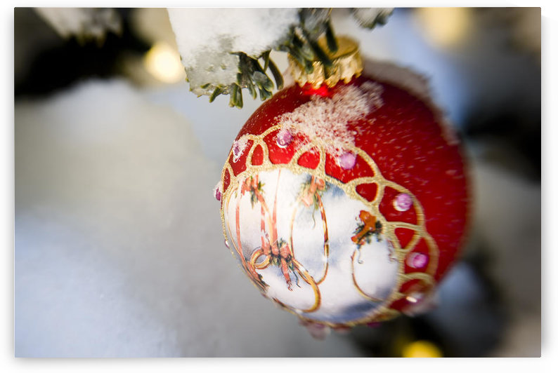 Close Up Of A Christmas Ornament Hanging On A Snowcovered Branch Outdoors During Winter by PacificStock