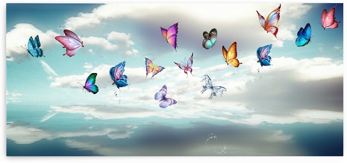 Butterfly  by Cammie Rayas