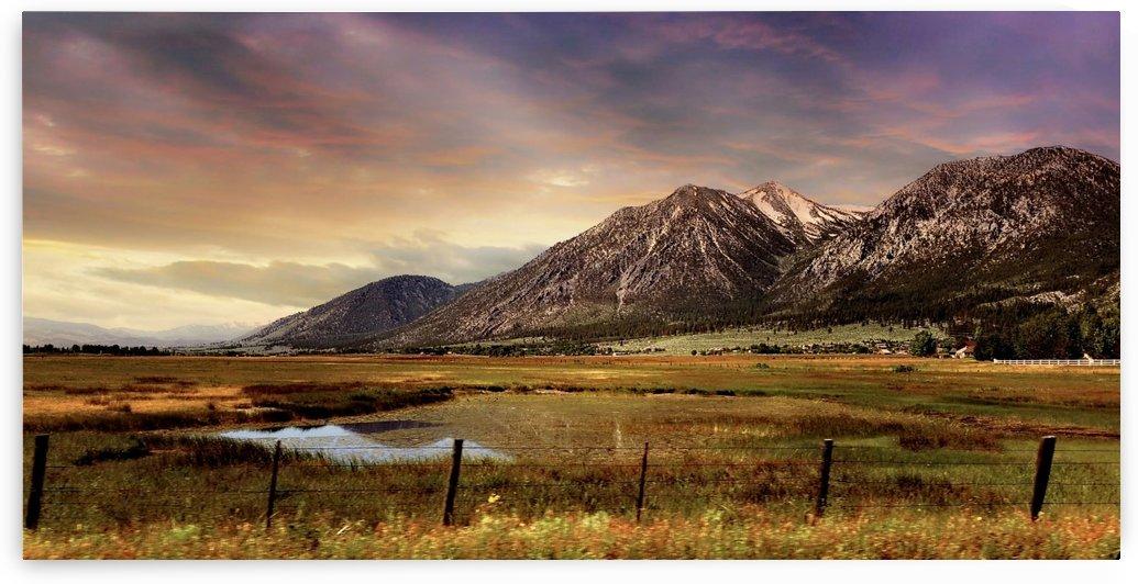 Sierra Nevada Majesty by Cammie Rayas