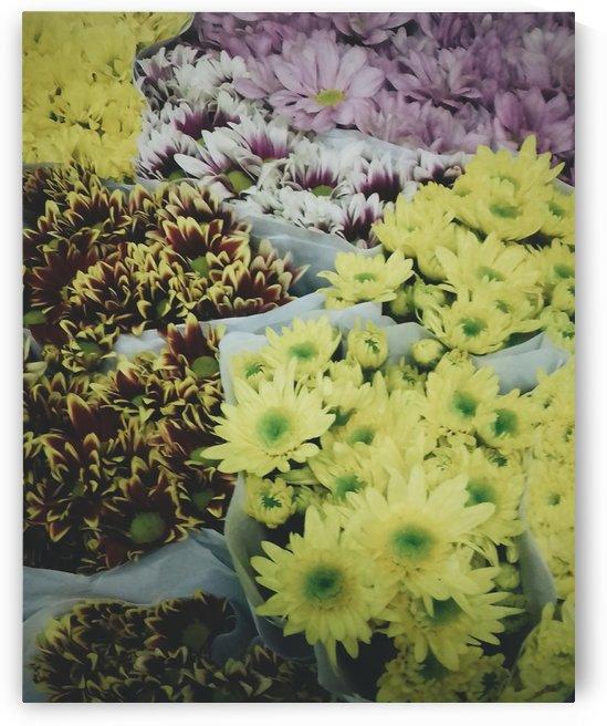 Florals by valeirevals