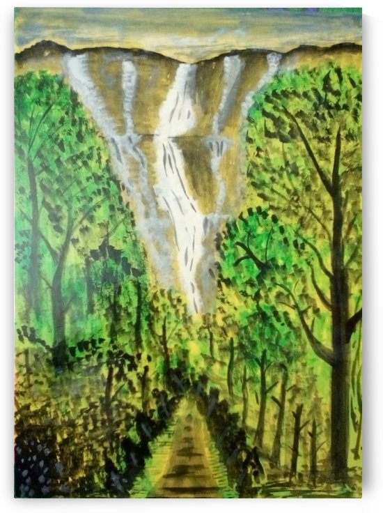 falls by Raja Hussain