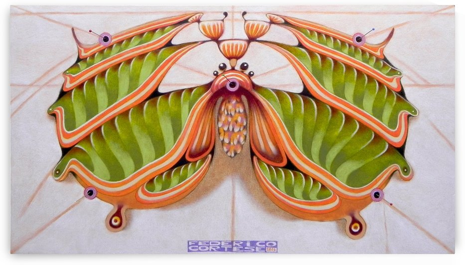 Fibonacci moth by federicocortese