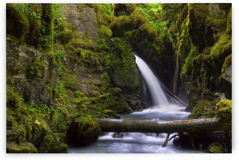 Virgin Creek Falls Near Girdwood, Alaska, Hdr Image by PacificStock