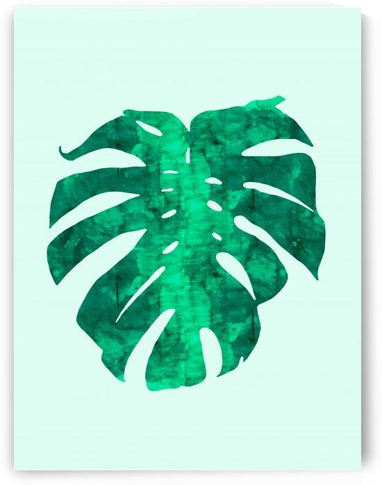 Tropical leaf I by Vitor Costa